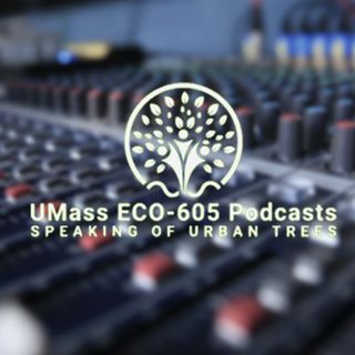 Urban Forestry Forum - UMass ECO 605