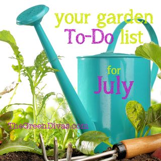"Gardening ""To-Do"" List for July"