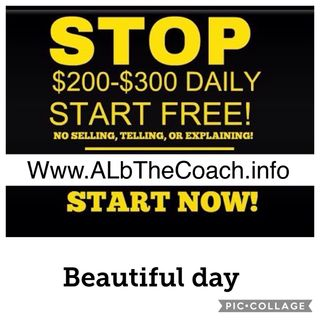 AL b The Coach - online network marketing business opportunity