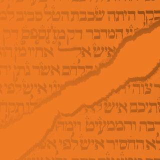 Biblical Criticism Conclusion