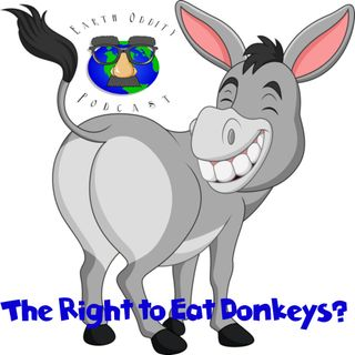 Earth Oddity 68: The Right to eat Donkeys
