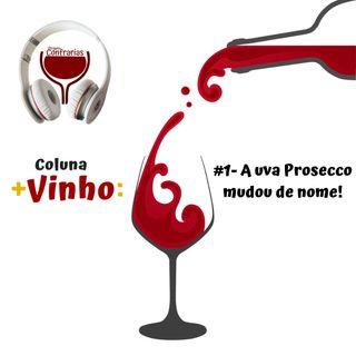 #1- A uva Prosecco mudou de nome!