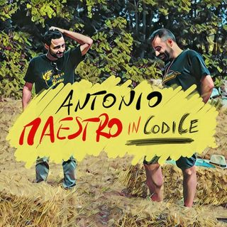 Antonio Torre. Maestro in codice