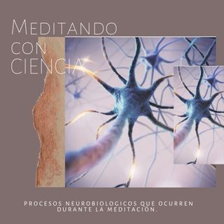 Episodio 6 - Procesos neurobiológicos que ocurren durante la meditación.