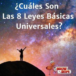 ¿Cuáles Son Las 8 Leyes Básicas Universales?