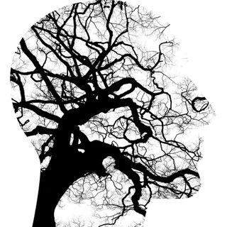 Capitulo 1: Reconocimiento, reflexión, tipologías y comportamiento ante la depresión.