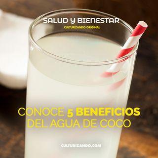 Conoce 5 beneficios del agua de coco • Salud y Bienestar - Culturizando