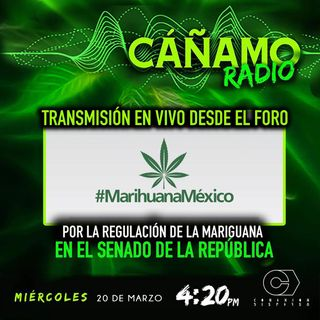 Canamo Radio Emision 41