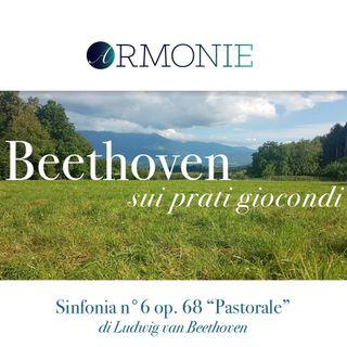 La Decima di Armonie, la Sesta di Beethoven. Intervista con Elisa Marchese.