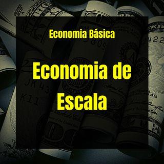 Economia Básica - Economia de Escala - 40