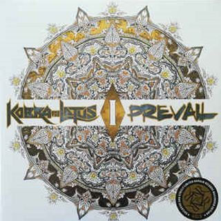 TRS Kobra & The Lotus Prevail Album Special 8th May 2020