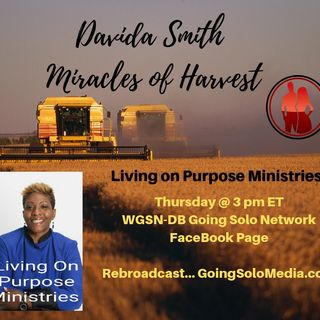 Get Ready for the Harvest - Davida Smith