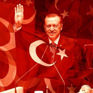 Elezioni locali in Turchia e Rischio estinzione degli insetti