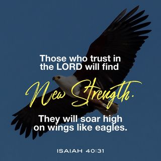 How to Walk in the Strength of the LORD When You Are Weary and Worried.