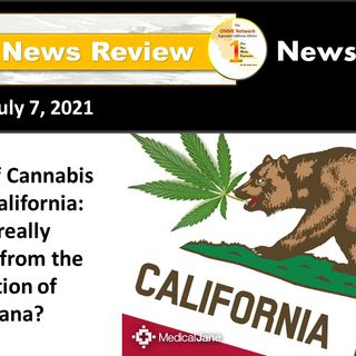 News Too Real: The State of Cannabis Equity in California:  who is really benefiting from its legalization?