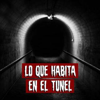 Lo que habita en el túnel | Historias reales de terror