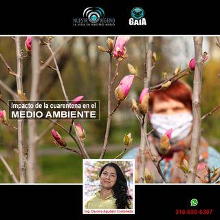 NUESTRO OXÍGENO Impactos de la cuarentena en el medio ambiente - Ing. Dayana Agudelo
