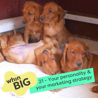 21 - Find marketing strategies for your personality