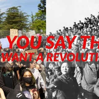 So, You Say That You Want A Revolution.?