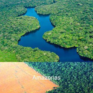 Recemos Por El Amazonas pidiendo la lluvia