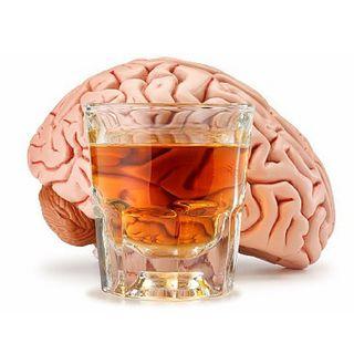 Que Bonito: El consumo moderado de alcohol aumenta la esperanza de vida