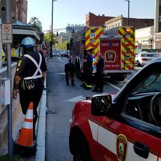 Woman Rescued From Red Line Tracks