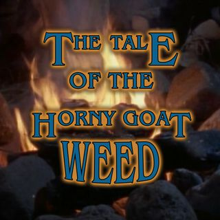 The Tale of Jake and the Leprechaun or The Tale of Horny Goat Weed