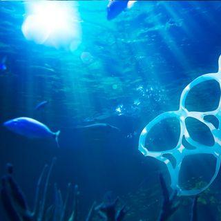 Plásticos prohibidos en la mitad del país