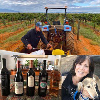 Discover Arizona Wines - Cori Solomon on Big Blend Radio