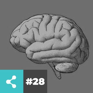 Neuromarketing - Marketing Talks - #28