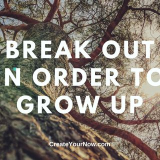 1858 Break Out in Order to Grow Up