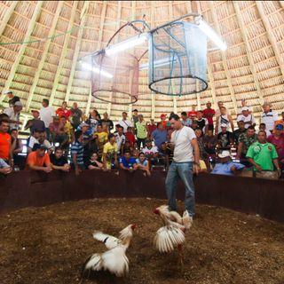 Así suena la vida - Documental sonoro Cuba en la valla - 22-09-2019