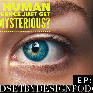 #286: Did Human Intelligence Just Got Less Mysterious