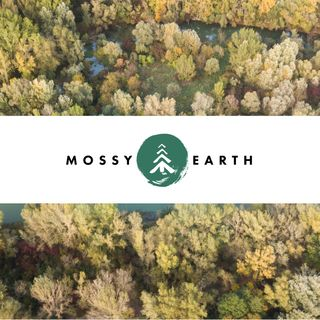 Mossy Earth - Restoring nature