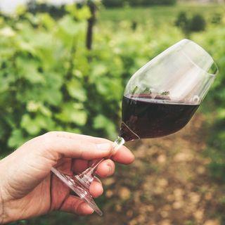 Por una buena copa de vino