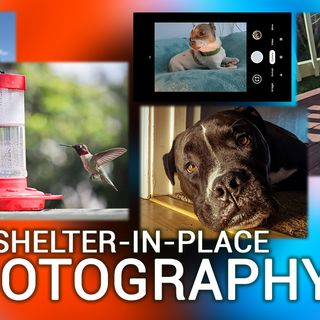 HOP 22: Shelter-In-Place Photography Tips
