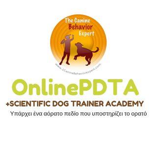 Πως γίνεται κάποιος εκπαιδευτής σκύλων - ψυχολόγος σκύλων
