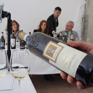 """Alla scoperta del """"Consorzio Tutela Lugana"""" con Stefania Vinciguerra - Best Wine Stars 2019"""