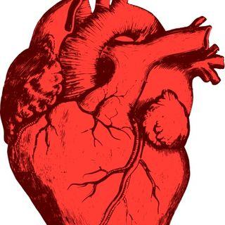 Cuore ossigeno emodinamica: il segreto della vita è anche migliorare la capacità di estrazione dell'ossigeno dal sangue