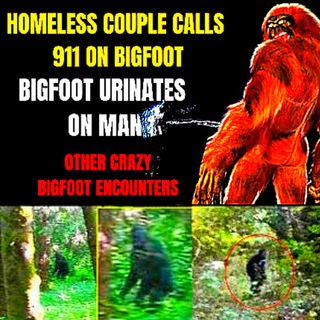 Weird Bigfoot Encounters 🐵 Homeless Couple Calls 911 on Bigfoot ACTUAL AUDIO