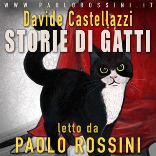 STORIE DI GATTI - Il nuovo Podcast di Paolo Rossini con i testi di Davide Castellazzi.
