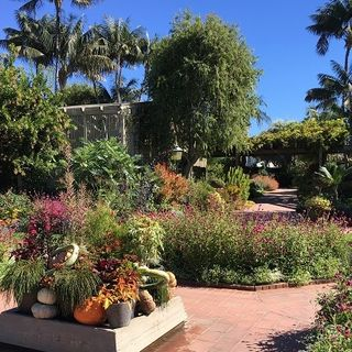 Sherman Library and Gardens, and Cafe Jardin on Southern California