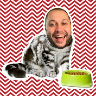 Daddy Eats Cat Food