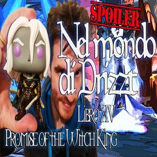 Nel mondo di Drizzt - Riassunto 15° libro della saga - Promise of the Witch-king - Intero