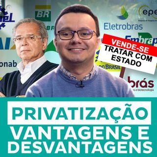 Privatização: Vantagens E Desvantagens