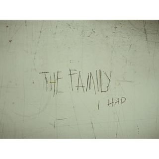 THE FAMILY I HAD-Katie Green