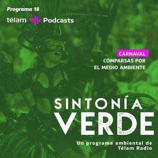 Carnaval: Comparsas por el medio ambiente