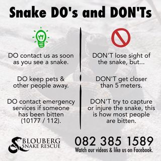 Snake DOs and DON'Ts
