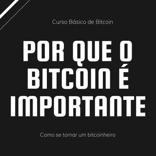 Como Se Tornar Um Bitcoinheiro - Por que o Bitcoin é importante - 06