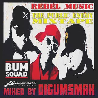 Rebel Music ..The Public Enemy Mixtape .. mixed by Digumsmak